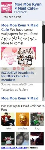 AFA09 Moe Moe Kyun Maid banner