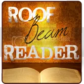 Roof Beam Reader