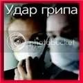 Udar gripa u Srbiji