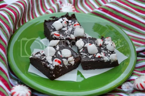 No-Bake Mint Chocolate Pudding Fudge | http://mybakingheart.com