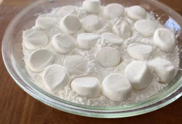 photo Snowman-Marshmallows-4.jpg