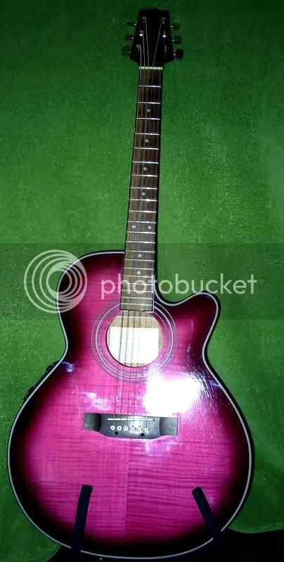 the New Rutabaga Guitar