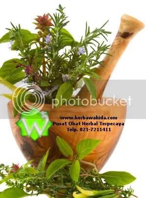 www.herbawahida.com