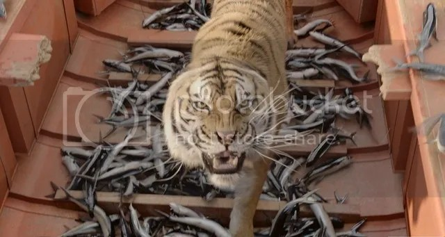Movie Review : Life Of Pi in 3D