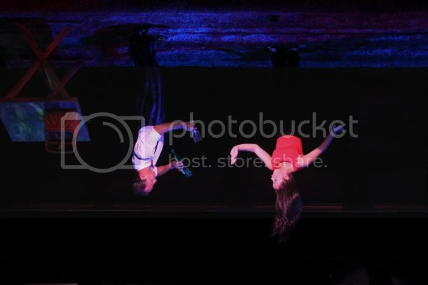 photo upsidedownceilingwalker2_zps949de61f.jpg