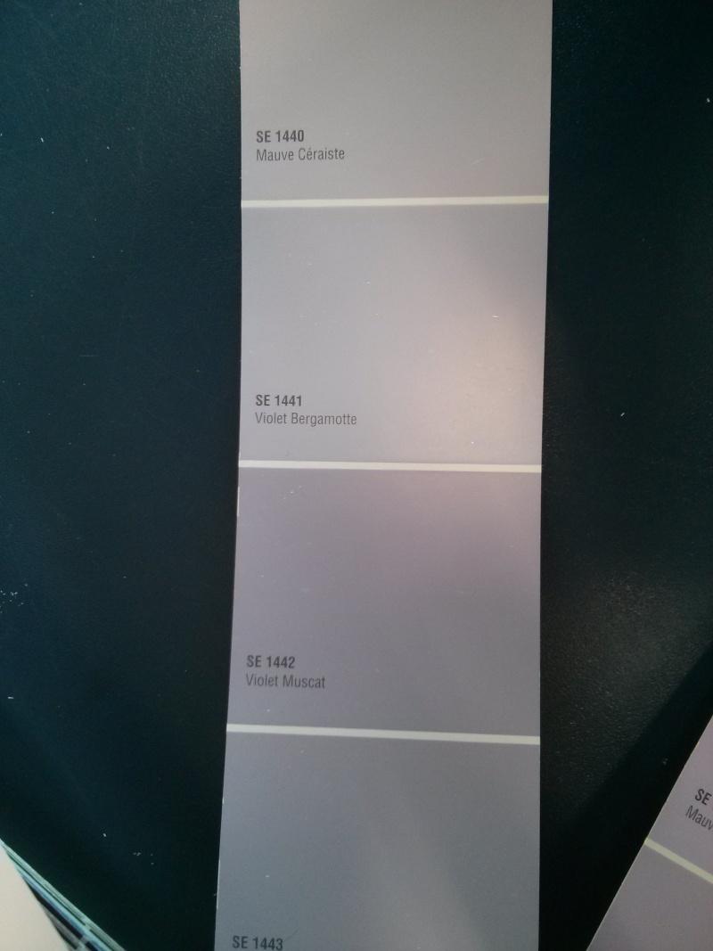Le Classique Peinture Pour Chambre De Bb Fille