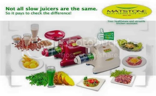 Matstone Multipurpose Slow Juicer