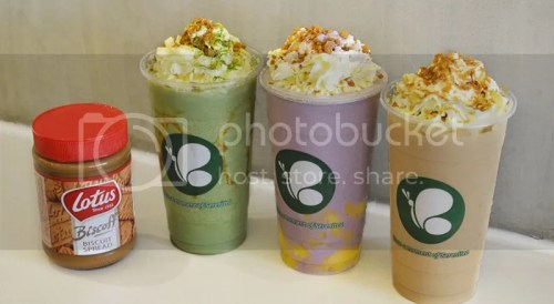 Serenitea & Lotus Biscoff Speculoos Coolers