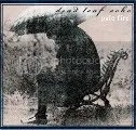Dead Leaf Echo CD Cover