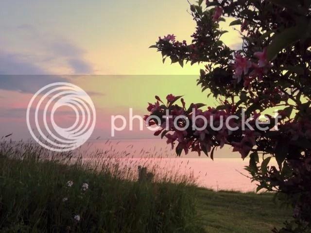 photo IMG_1700------best.jpg