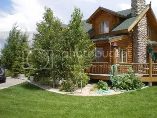Cabin in Fairview