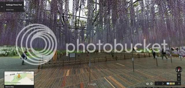 photo ahikagaflowerpark_googlemap2.jpg