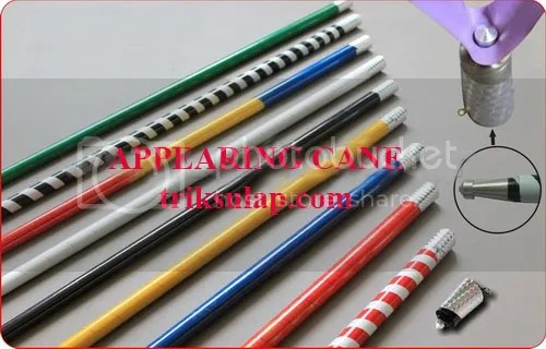 appearing cane photo: Appearing Cane - triksulap appcane.jpg