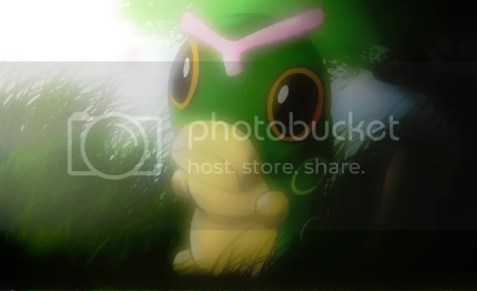 photo caterpie_by_christophernicol_zpsbxjxtcge.png