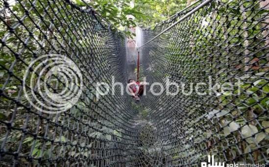 tangga netting