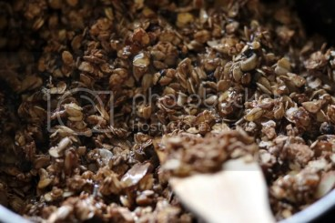 Oats and Nuts for Granola