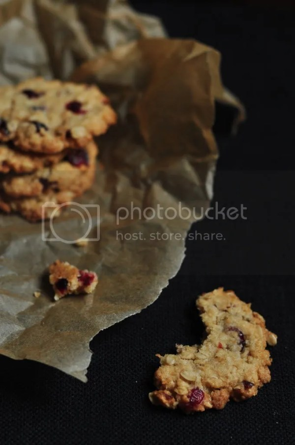 Oatmeal Cranberry Cookie