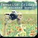 Favorite Fridays at Skinned Knees