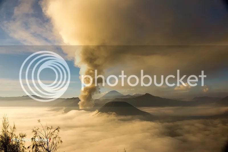 Pemandangan langka di Gunung Bromo dalam lima tahun sekali