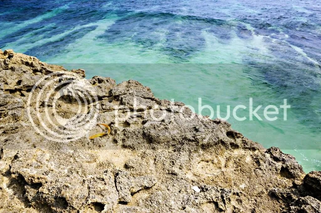 Sudut lain Pantai Banyu Tibo, permukaan lautnya sangat jernih