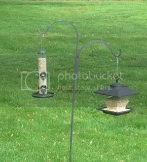 photo BirdFeeders_zpsda5237f3.jpg