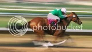 photo racehorse_zps6d24ea74.jpg