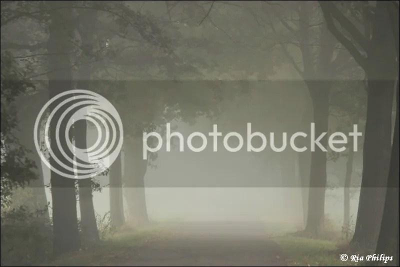 photo IMG_3702.jpg