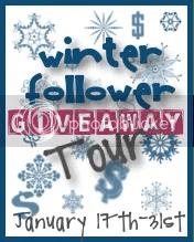 Winter Follower Giveaway Tour