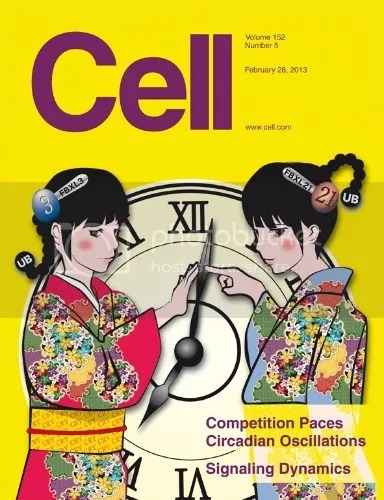Cell, Volume 152, Issue 5 photo cellcover_zps342b968d.jpg