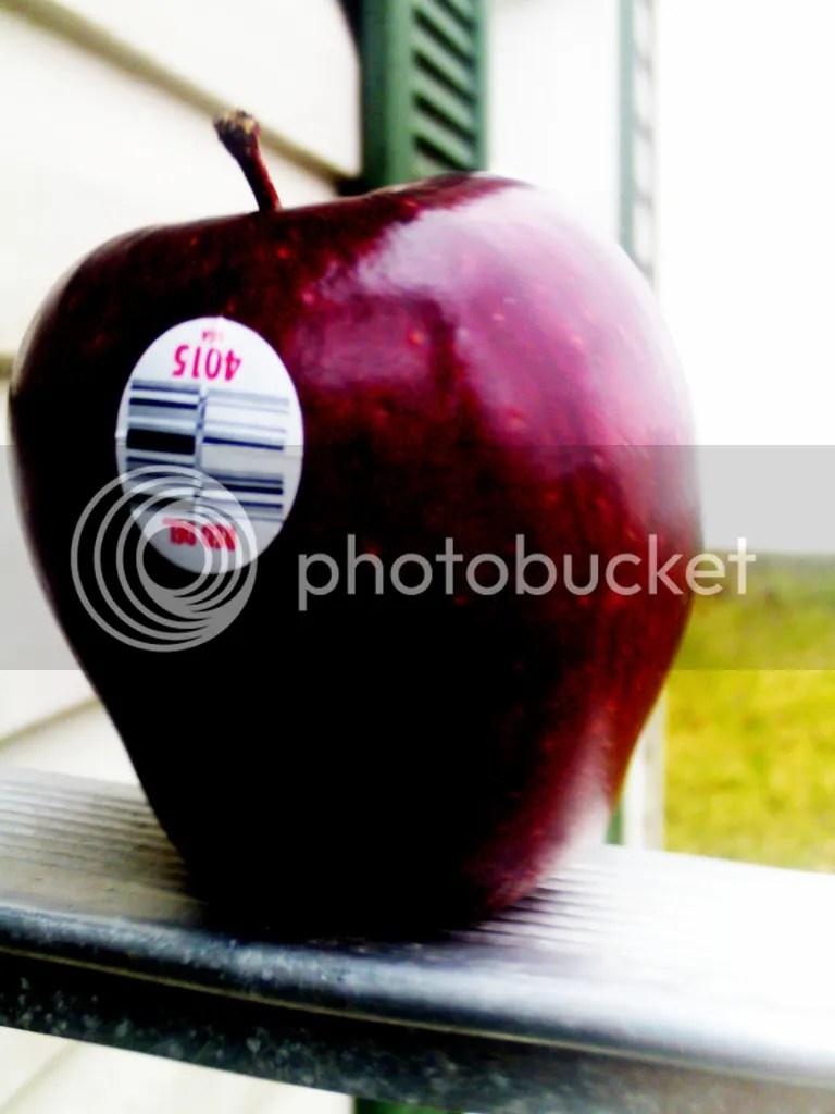 photo apple1_zpszl9vmei7.jpg