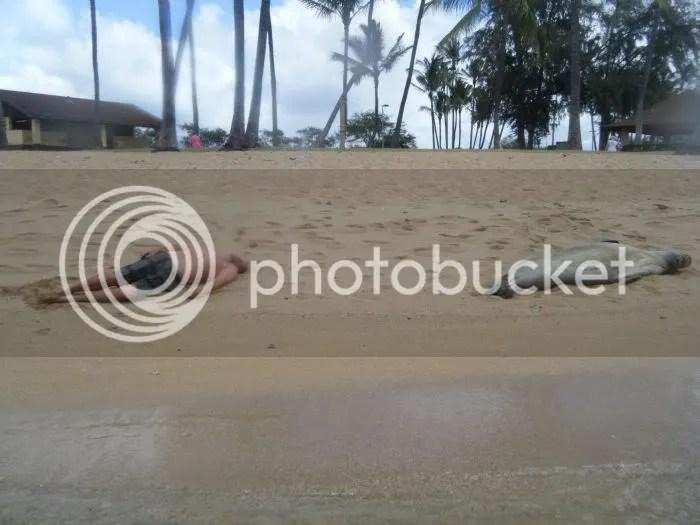 https://i2.wp.com/i834.photobucket.com/albums/zz268/fotoslamenza/Fotos-fds/125/fotopodborka_037.jpg