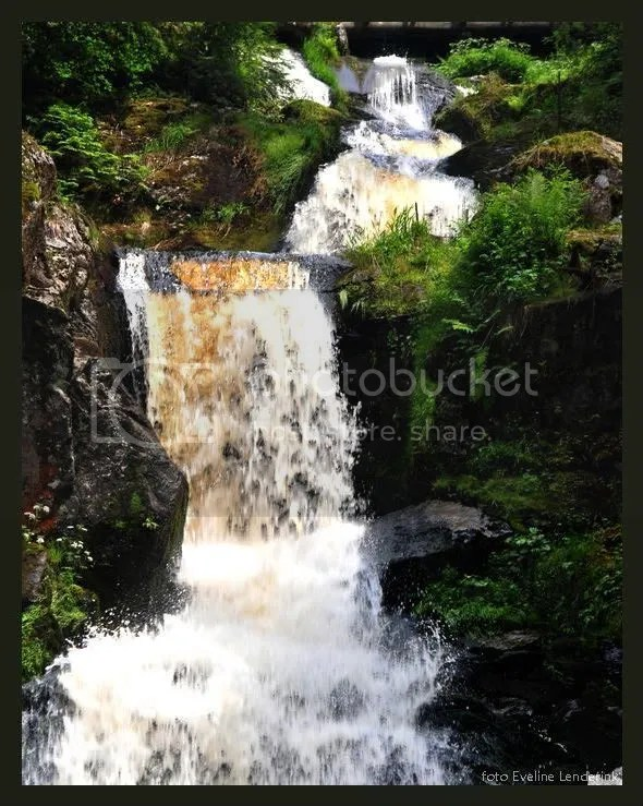 triberg2.jpg picture by musseke