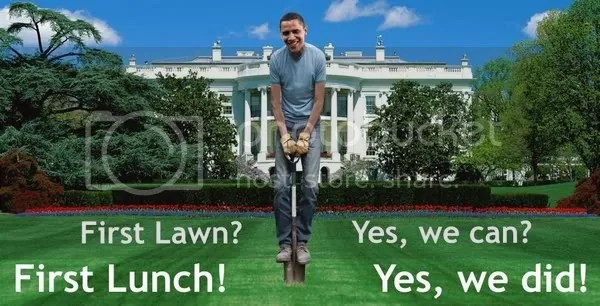Vegetable garden in White House lawn