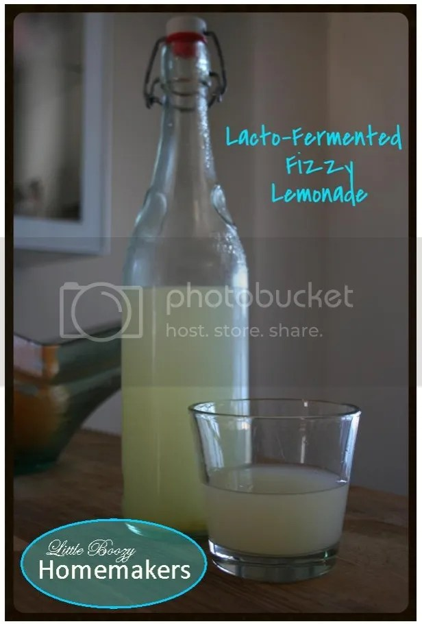 Homemade lacto-fermented pop