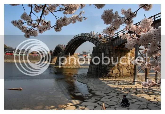 four season bridge