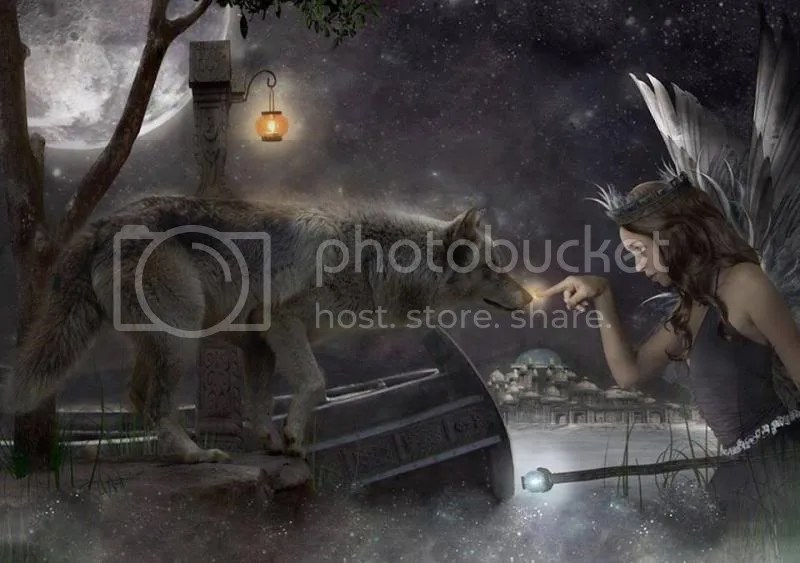 Le Loup et les l photo louplegendeeurope_zps225b68ff.jpg
