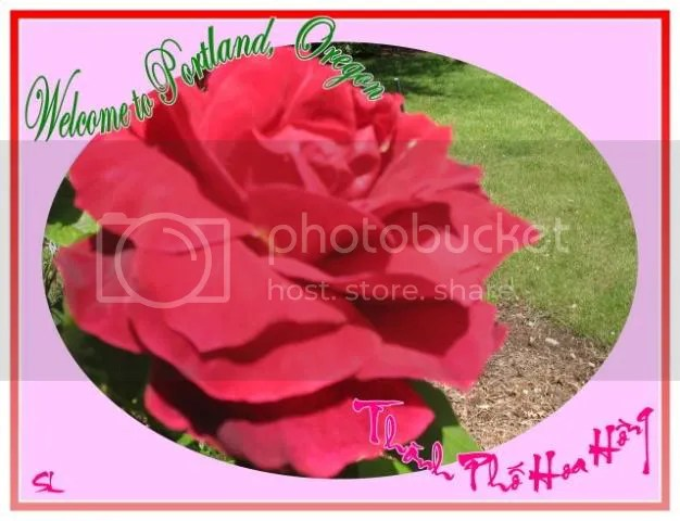 https://i2.wp.com/i86.photobucket.com/albums/k88/suonglam_2006/ChucMung/welcometoPortland-1.jpg