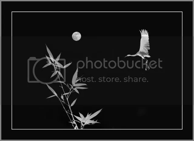 https://i2.wp.com/i86.photobucket.com/albums/k88/suonglam_2006/MotCoiThienNhan/anhthien7.jpg