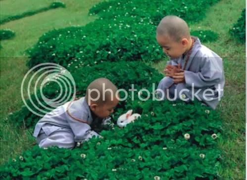 https://i2.wp.com/i86.photobucket.com/albums/k88/suonglam_2006/MotCoiThienNhan/lichdinhhoi-2-1.jpg
