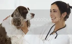 http://petsopedia.com/pet-adopting/