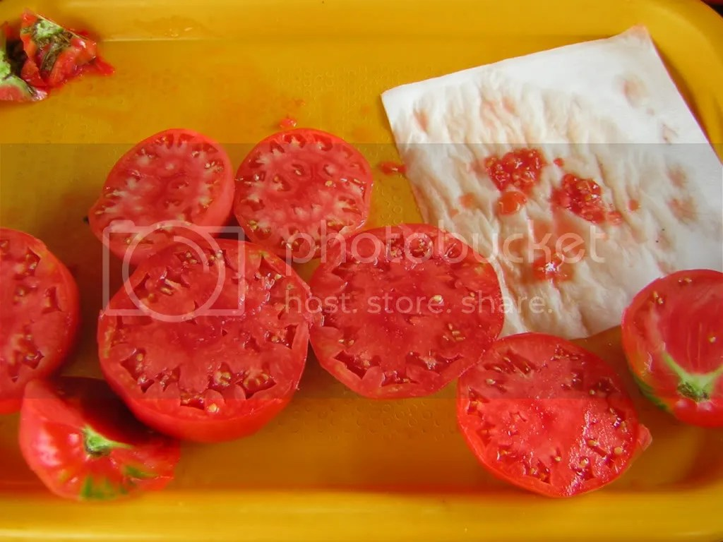 rosii pentru seminte
