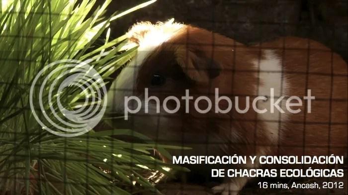 photo ArtMAPEO-ImagendeMASIFICACION_zps802269b5.jpg