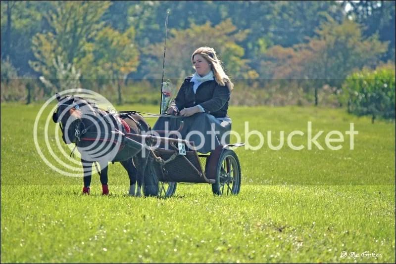 photo Pony.jpg