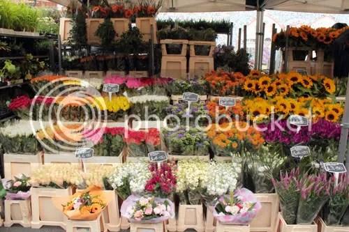 Colombia Road Flower Market 10