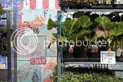 Colombia Road Flower Market 13