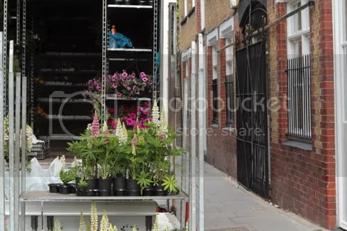 Colombia Road Flower Market 8