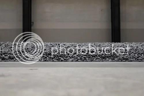 Sunflower Seeds Ai WeiWei Tate 2
