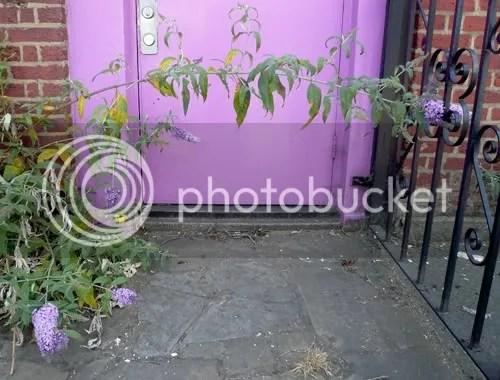 colour doorway