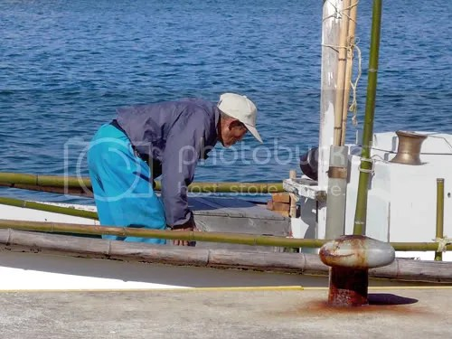 Oda Fishermen 5