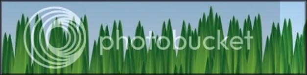 banner34-630x150